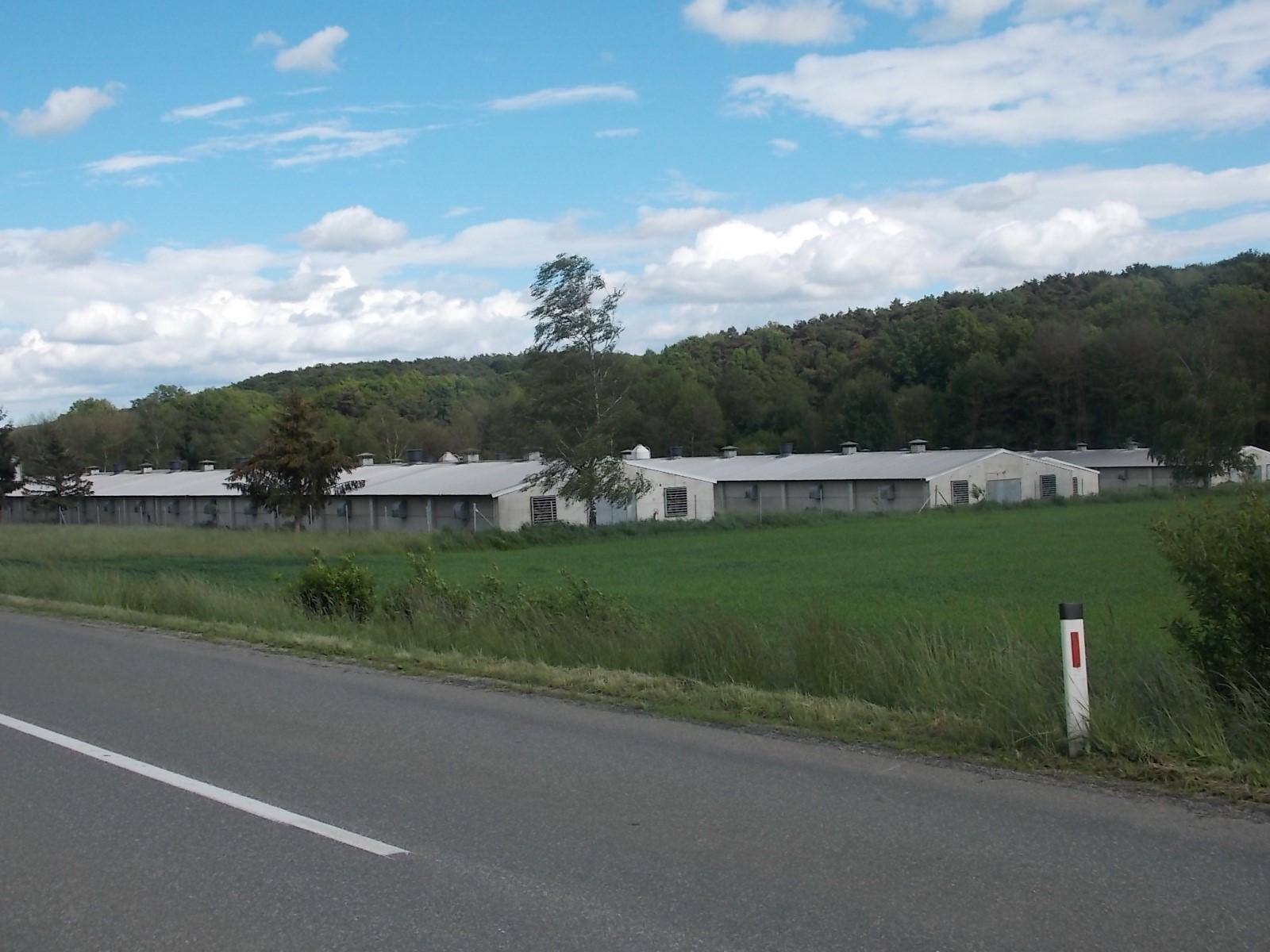 Farma Nesnic - Gornji Petrovci
